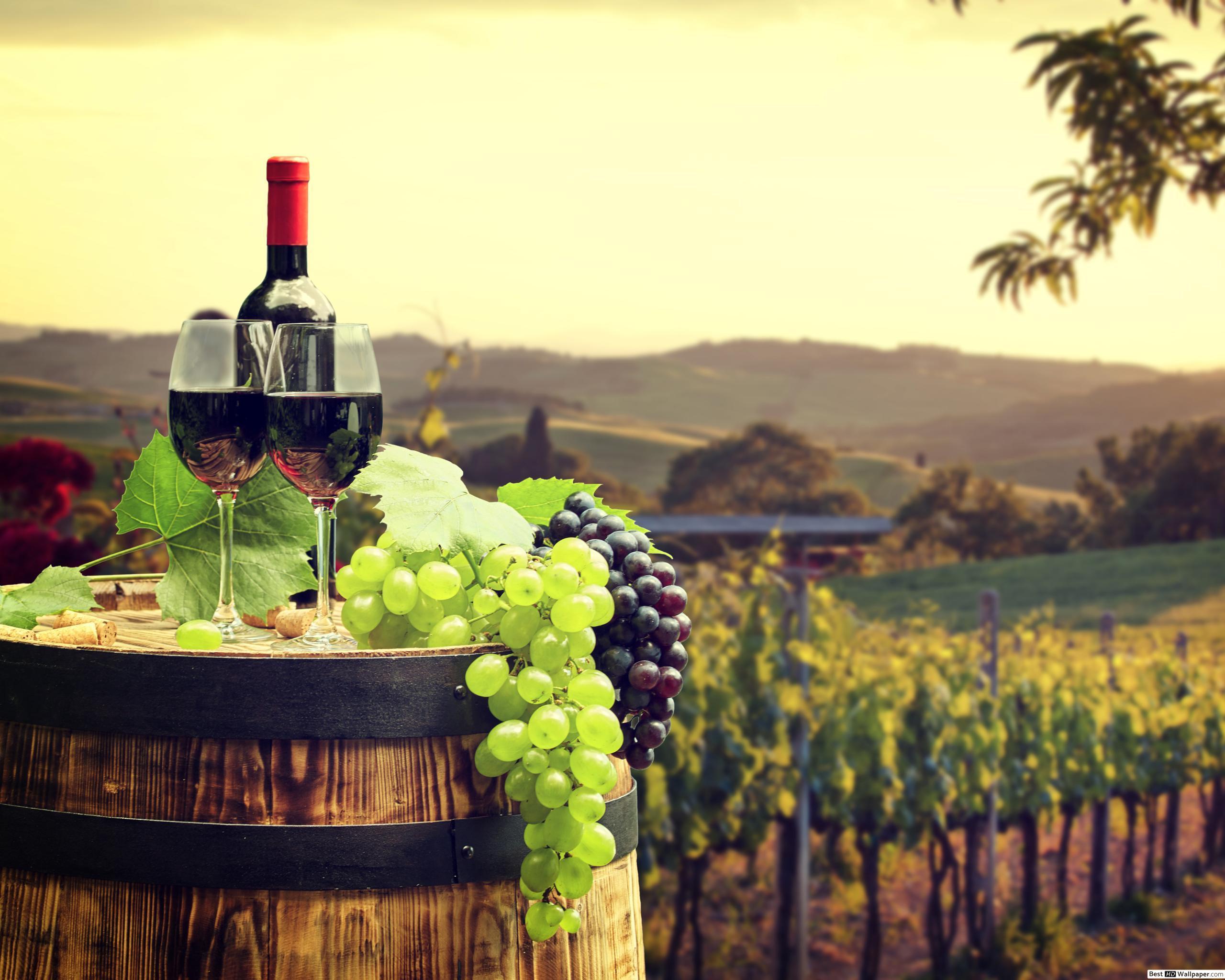 1 ден 23.10.2020 Петок: Гроздобер и чаша вино (Битола-Неготино-Струмица)