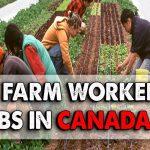 Земјоделски работници во Канада